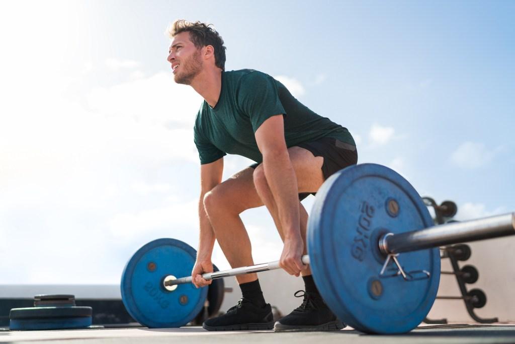 Best Full Body Workouts