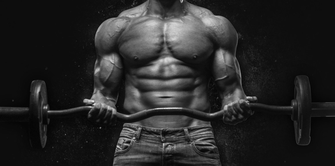 Best Biceps Exercises for Beginners