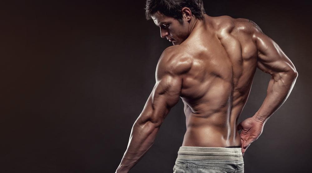 tricep brachi arm extension