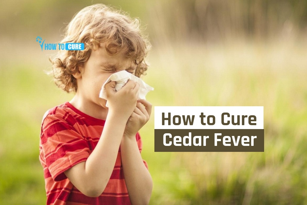 home remedies to cure cedar fever