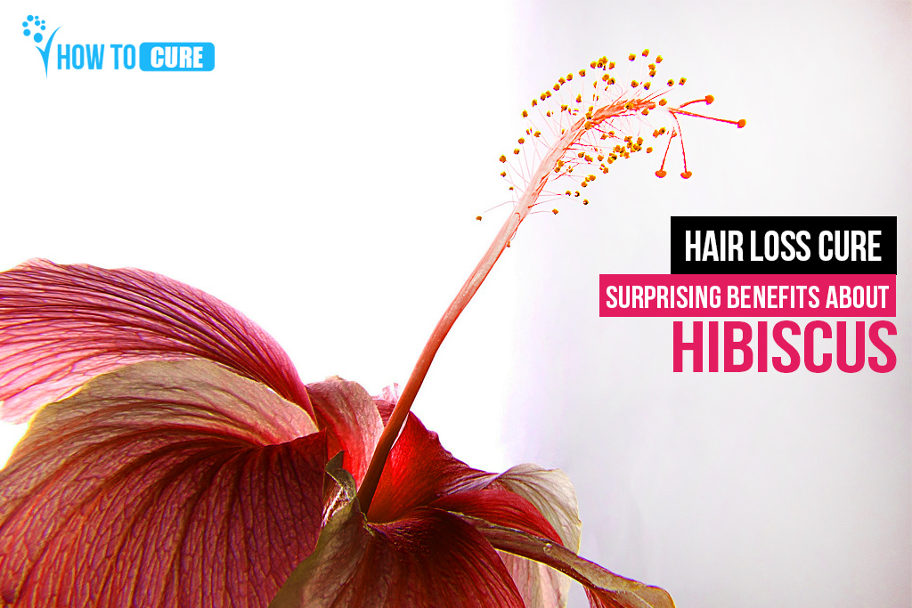 Hibiscus For Hair 6 Surprising Benefits About Hibiscus How To Cure