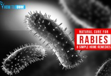 Natural Cure for Rabies 8 Simple Home Remedies