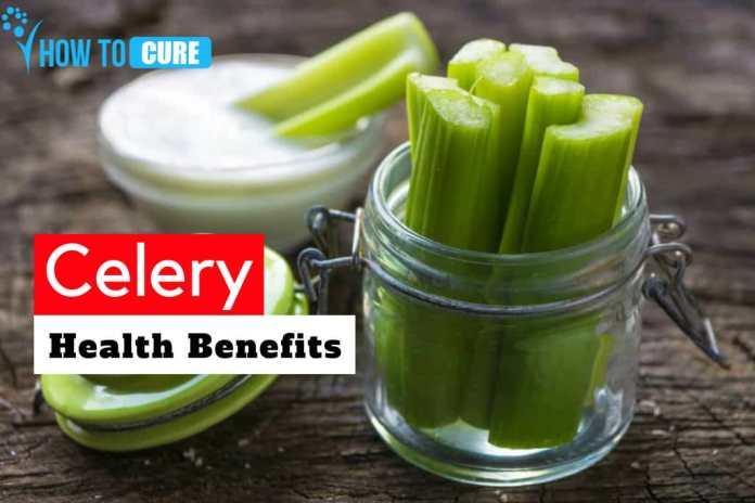 celery Health Benefits