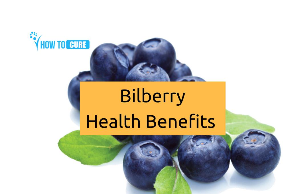 Bilberry Health Benefit