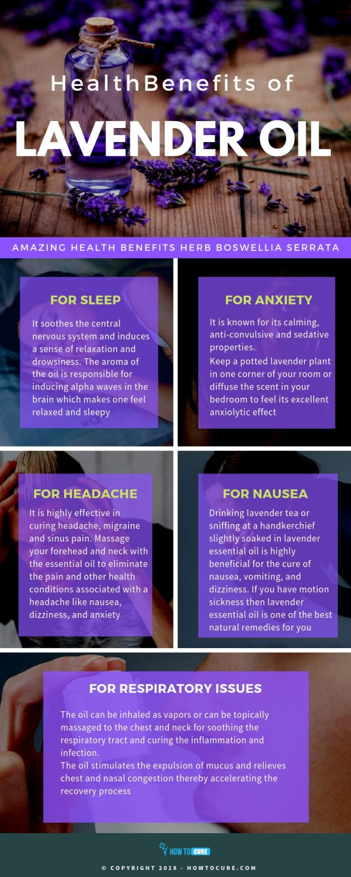 lavender oil benefits infographic