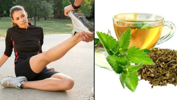 spearmint tea for muscle cramp