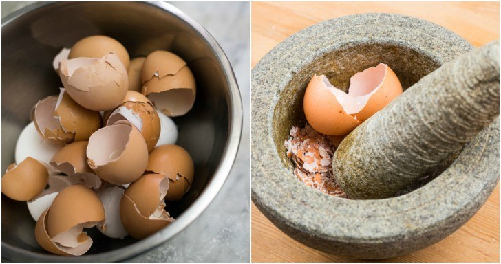 Egg Shells for white marks on teeth