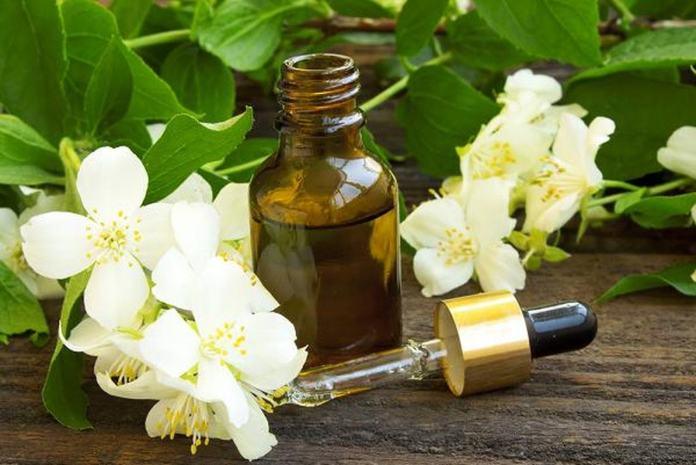 Jasmine oil treatment for headache