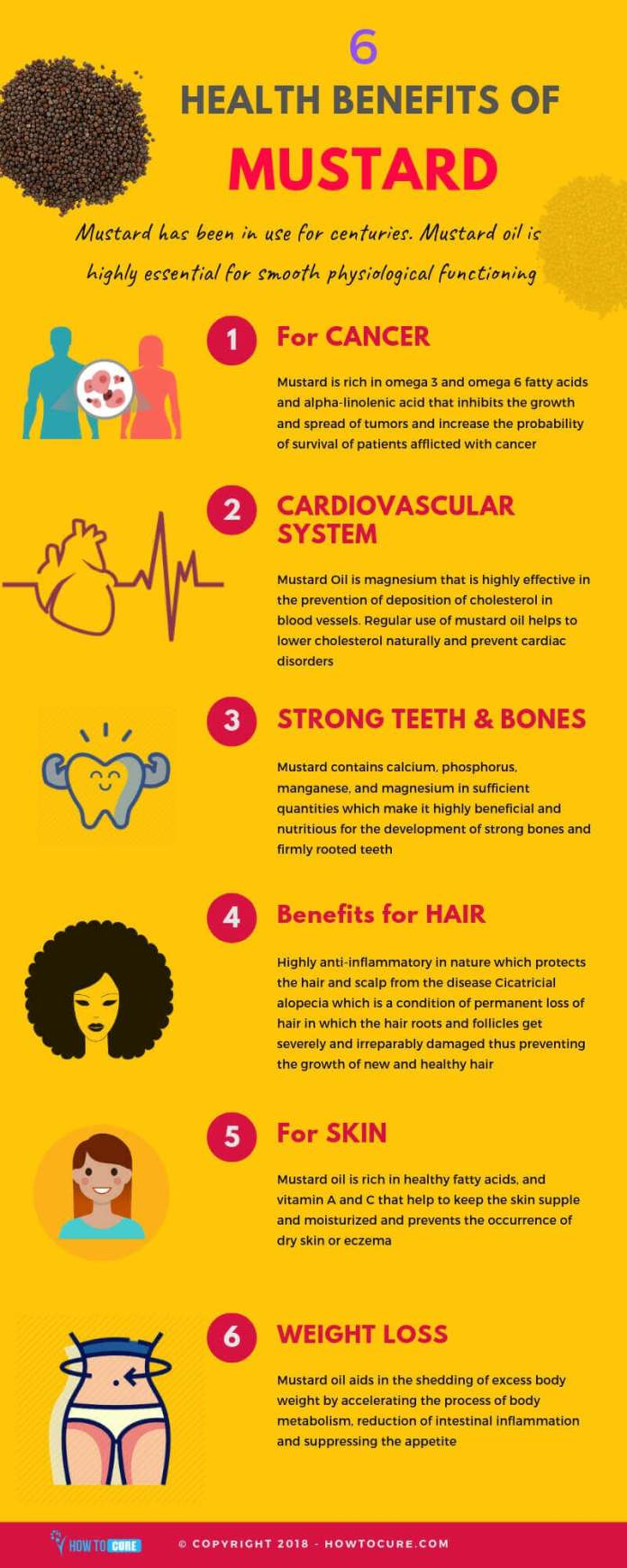 mustard health benefits for the body infographic