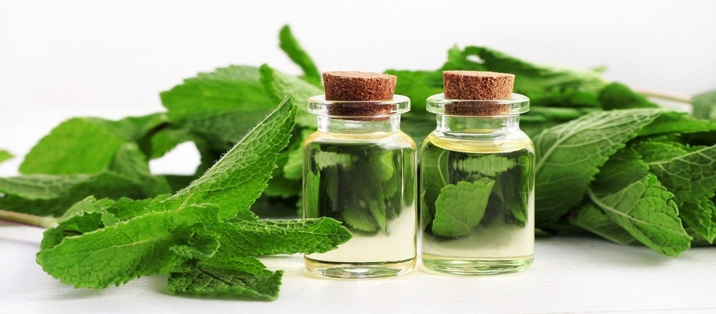 peppermint oil for curing hives