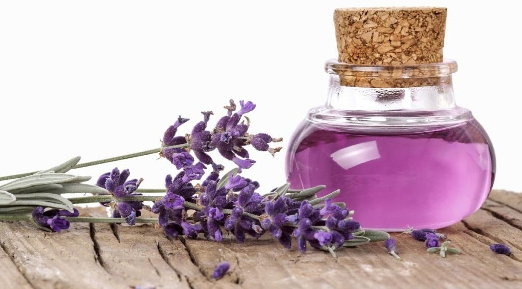 relieve from pregnancy nausea by using Lavender Oil