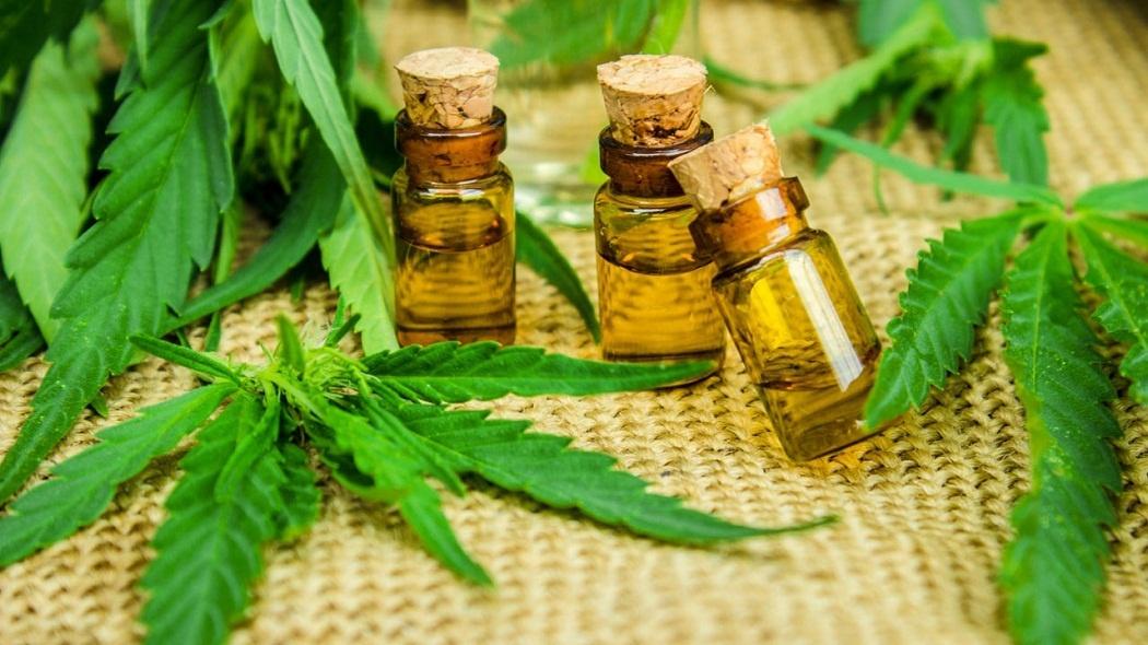 cannabis oil for cancer