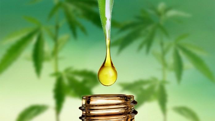 cbd oil for focus