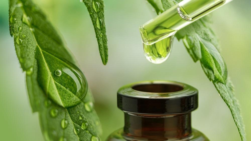 cbd oil for uti