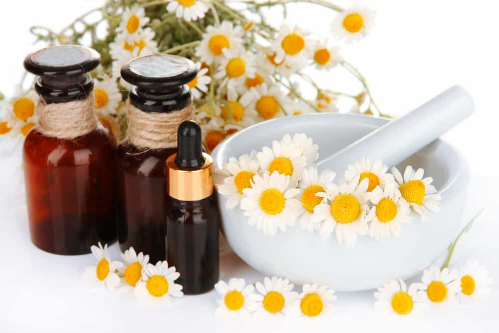 chamomile oil For sinus infection