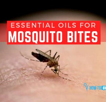 essential oils for mosquito bites