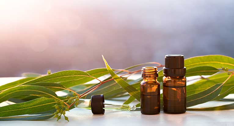 eucalyptus oil for stress