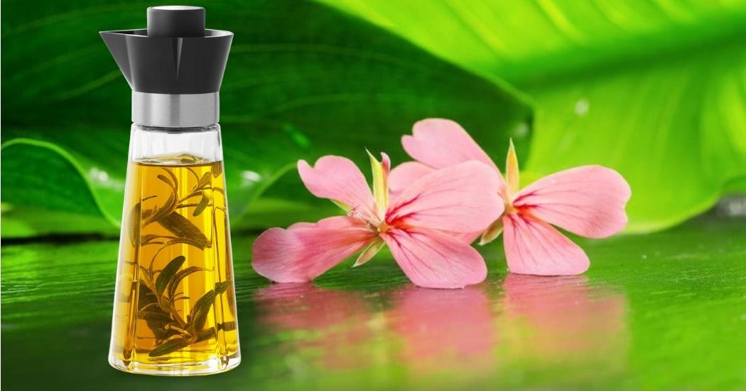 geranium essential oil for uti