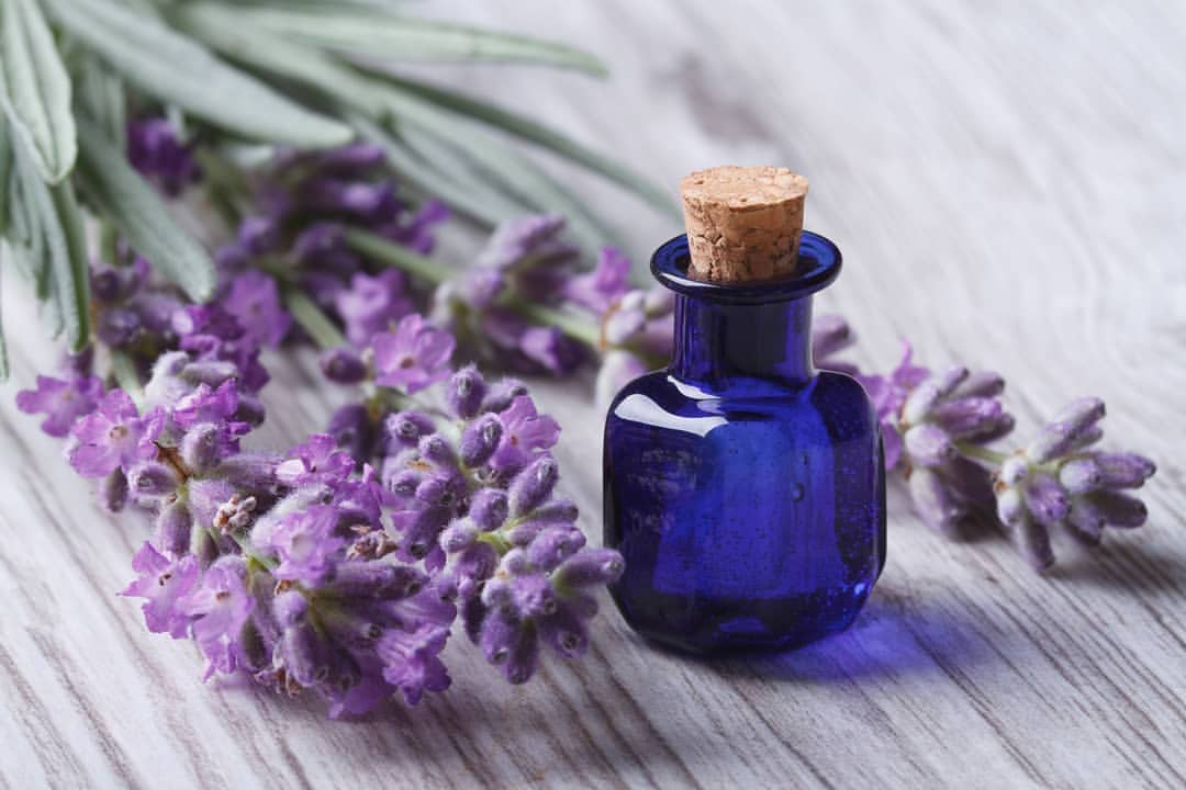 lavender oil for pain