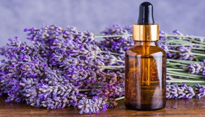 lavender oil for wrinkles