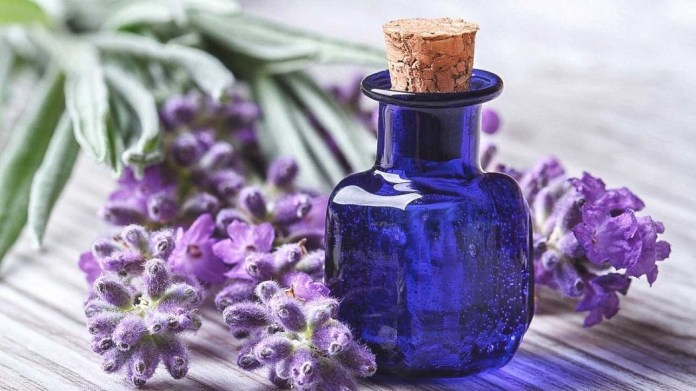 lavender oils for tinnitus