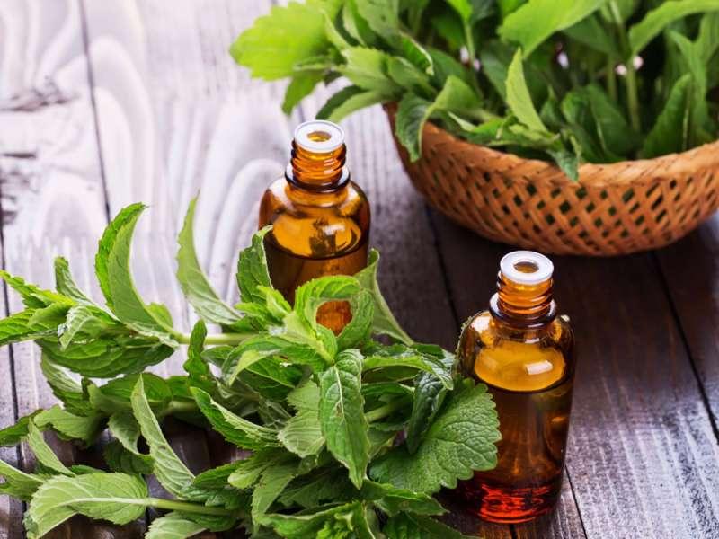 peppermint essential oil for sudden vertigo