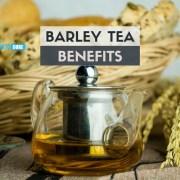 barley tea benefits