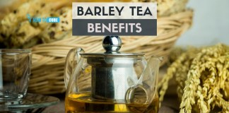 barley tea benefits