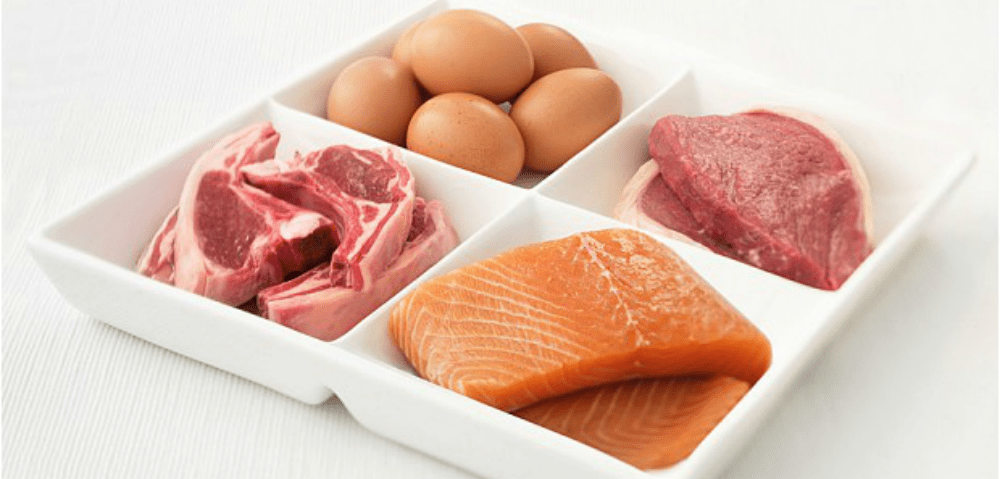atkins diet for weight loss