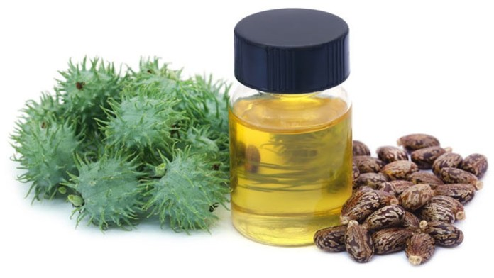 castor oil for ringworm