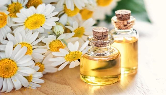 chamomile oil for burns