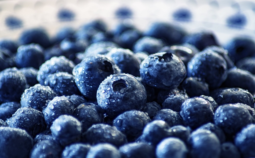 delicious blueberries for weight loss