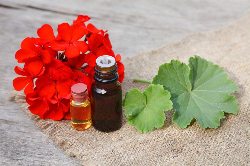 geranium oil for shingles
