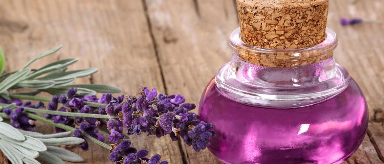 lavender oil for ringworm