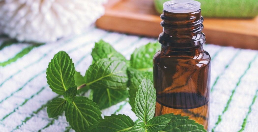 peppermint essential oil for heat bumps