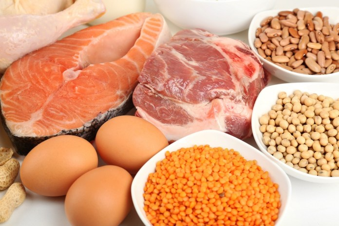 protein content of every meal