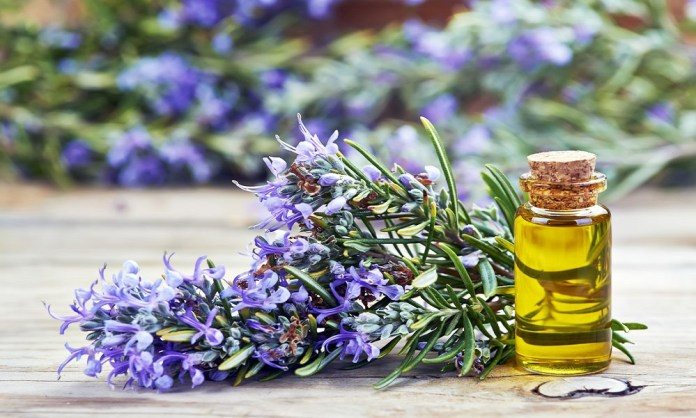 rosemary oil for dizziness