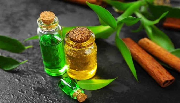 tea tree essential oil for treats candida