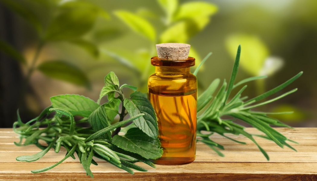 tea tree oil for remove acne scars