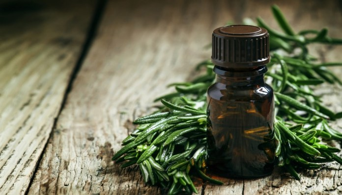 tea tree oil for stop chest acne
