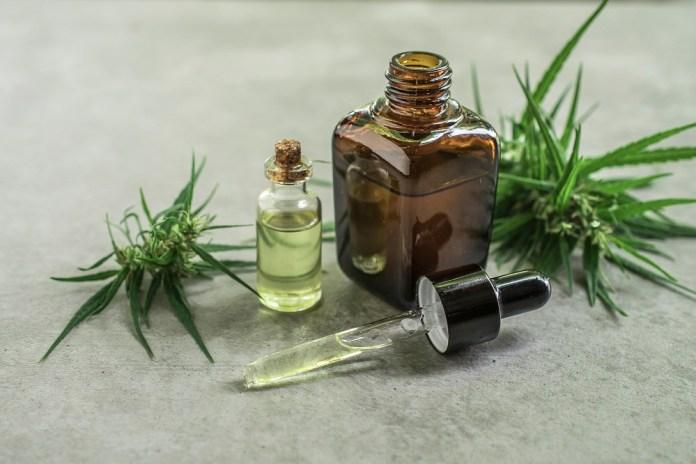 cannabis Seed essential oil for high cholesterol