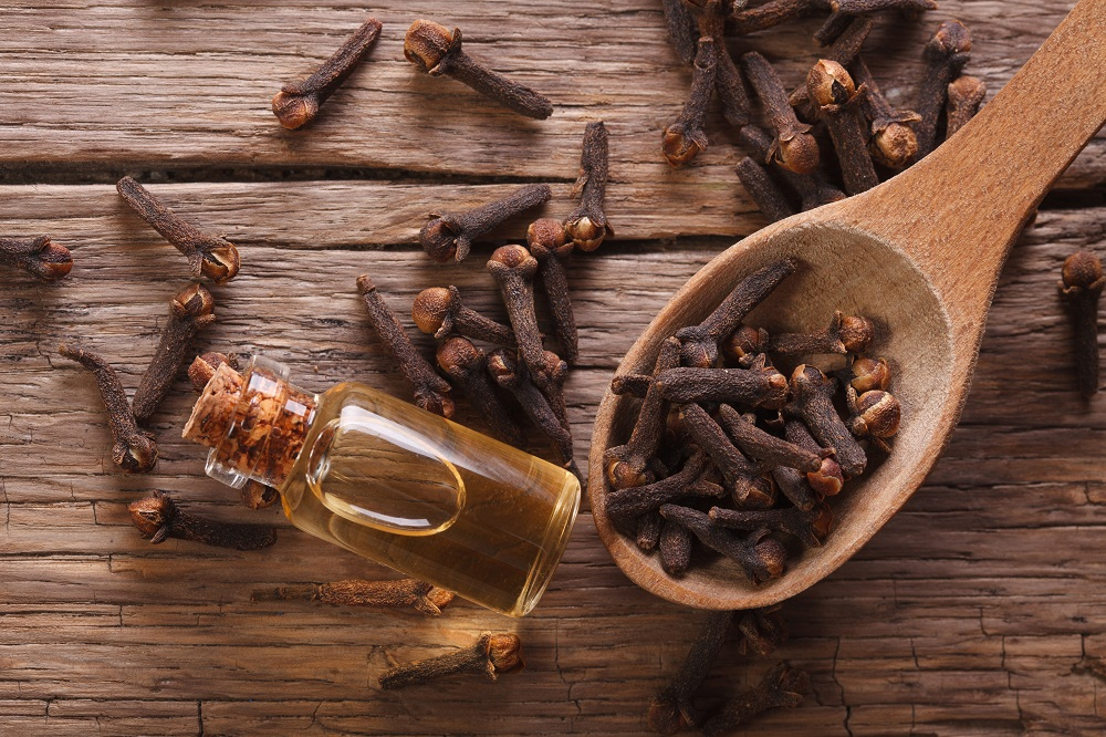 clove essential oil for high cholesterol