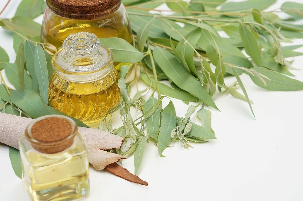 eucalyptus essential oil for rheumatoid arthritis