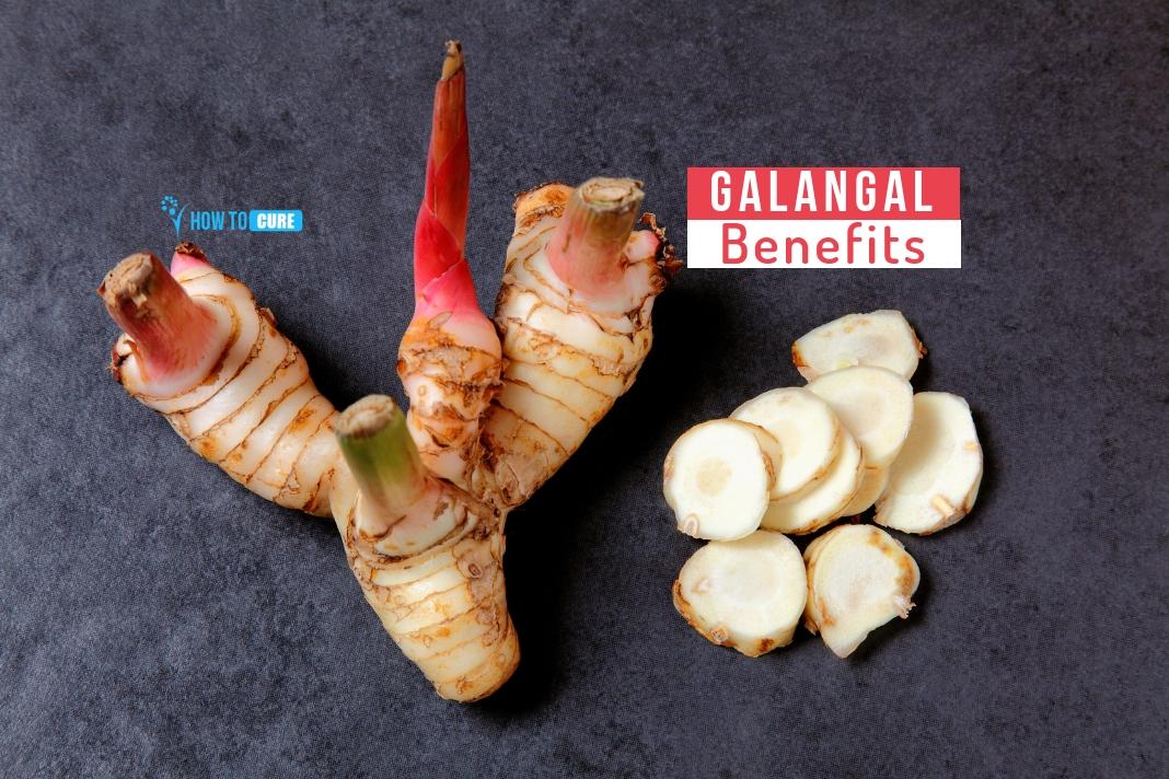 galangal benefits