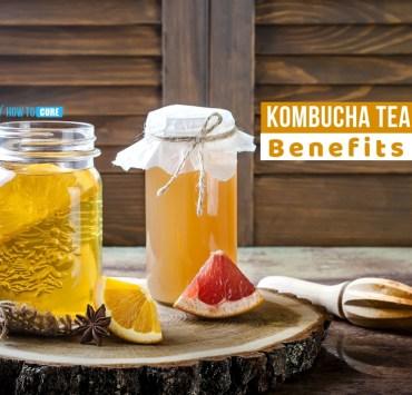 kombucha tea benefits