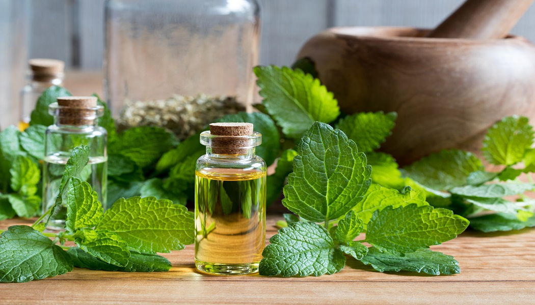 lemon balm essential oil for clear cold sores
