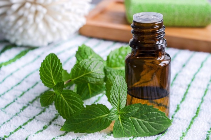 peppermint essential oil for foot pain