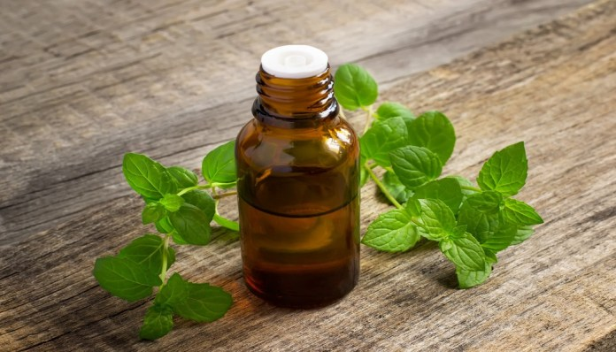 peppermint oil for yeast infection