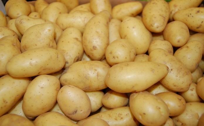 potato for eye bags