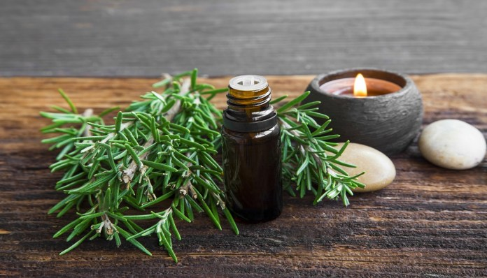 rosemary essential oil for memory loss